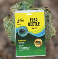 PWK535 Flea Beetle Kit